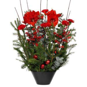 Hög julgrupp med amaryllis, ilex, nejlika och tall . Ur Interfloras julsortiment.
