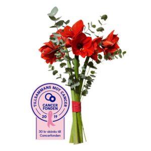 Julbukett med röd snittamaryllis och eucalyptus. Ur Interfloras julsortiment.