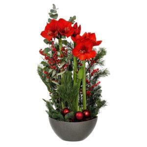 Stor julgrupp med krukamaryllis och snittamaryllis tillsammans med ilex, blandat grönt och små julkulor i rött. Fantastiskt vacker. En julgrupp från Interflora.