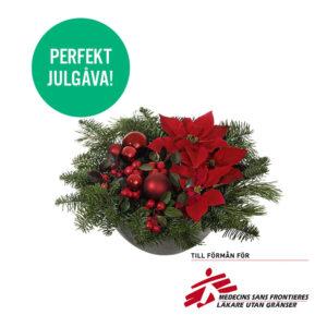 Julgruppen på bilden består av julstjärnor, vaktelbär och gran/tall . Allt vackert arrangerat i en biologiskt nedbrytbar skål tillverkad av plantfiber (bambu, halm och majspulver). Beställ ett blomsterbud smidigt och snabbt i Interfloras e-butik!