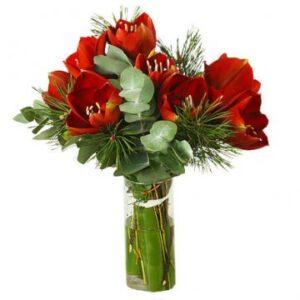 Amaryllisbukett (snittblommor) tillsammans med eucalyptusblad. Skicka buketten med ett bud från Florister i Sverige och önska God Jul!